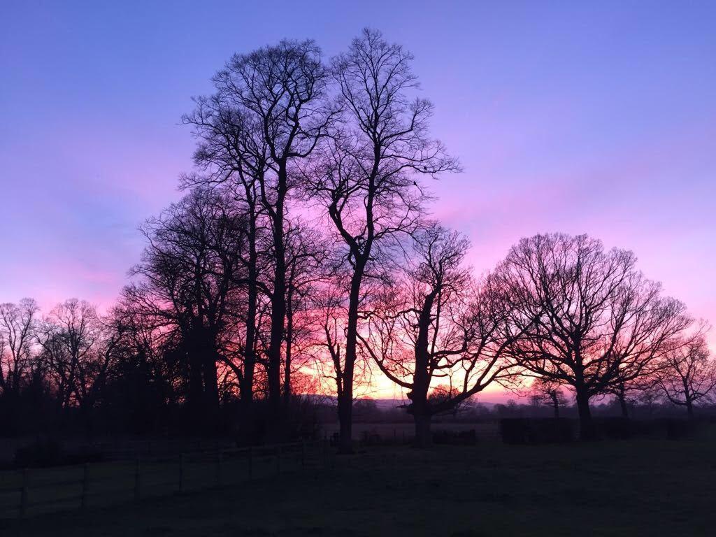 reflexology_in_rossett_limes_sunset_image